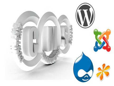 CMS website development company in bangalore, Joomla website, Drupal Website, Magento Website bangalore